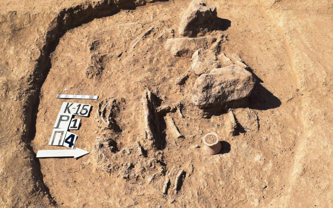 The Late Bronze Age necropolis of Kangurttut